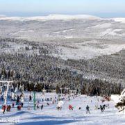 narciarstwo